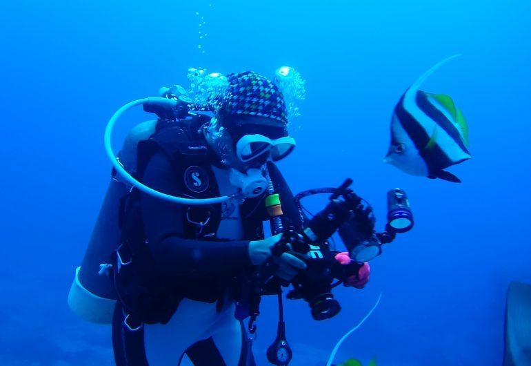 diving-713816_1920